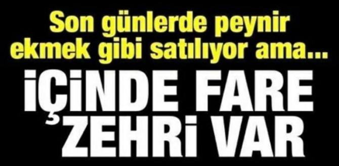 F-are Z-ehri Var Acil Çöpe Atın..