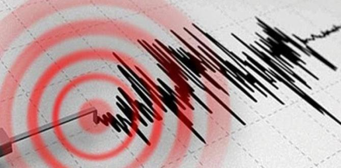 Ard Arda Deprem Sallandırdı.