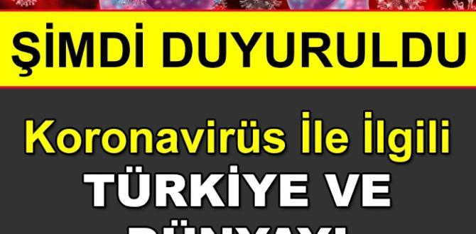 Koronavirüs Tedavisiyle İlgili Türkiye'yi ve Dünyayı Sevindiren Haber